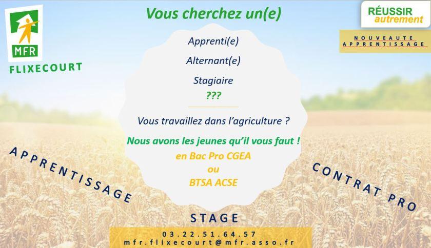 Vous cherchez un apprenti agricole